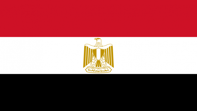 """""""القاهرة"""": جهودنا في حقوق الإنسان تعبر عن إرادة وطنية جادة"""